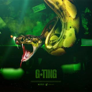 G Ting