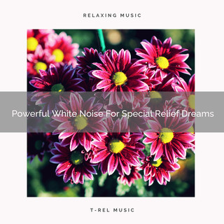 Powerful White Noise For Special Relief Dreams