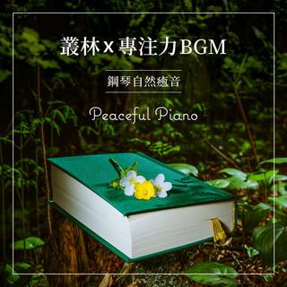 叢林x專注力BGM / 鋼琴自然癒音 (Peaceful Piano)