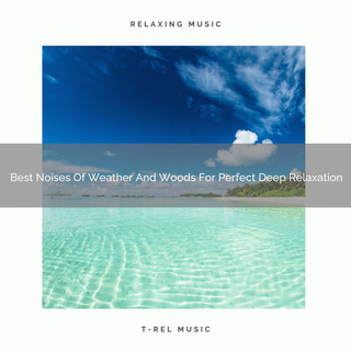 Best Noises Of Weather And Woods For Perfect Deep Relaxation