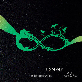 Forever (Feat. Snook)