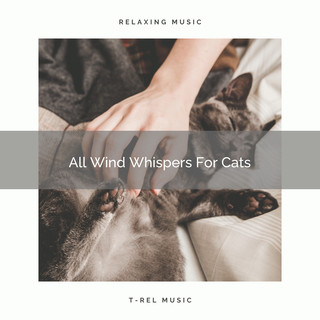 All Wind Whispers For Cats