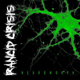 Neuromorph