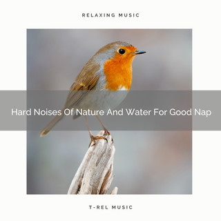 Hard Noises Of Nature And Water For Good Nap