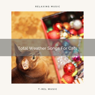 Total Weather Songs For Cats