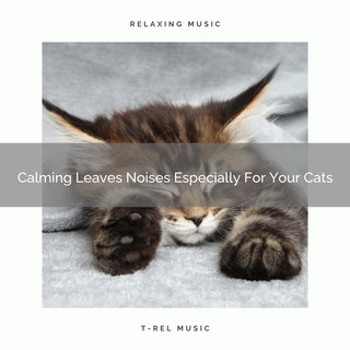 Calming Leaves Noises Especially For Your Cats