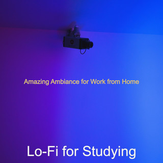 Amazing Ambiance For Work From Home