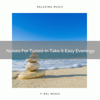 Noises For Tuned - In Take It Easy Evenings