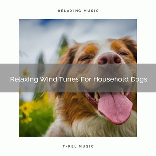 Relaxing Wind Tunes For Household Dogs
