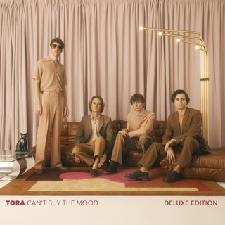 Can't Buy The Mood (Deluxe Edition)