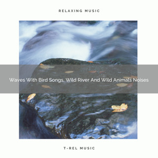 Waves With Bird Songs, Wild River And Wild Animals Noises
