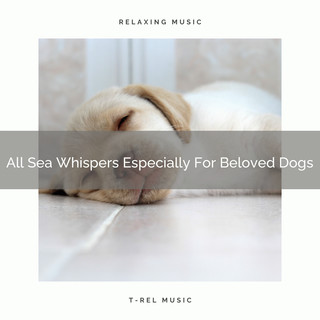 All Sea Whispers Especially For Beloved Dogs