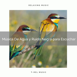 Música De Agua Y Ruido Negro Para Escuchar