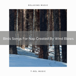 Birds Songs For Nap Created By Wind Blows