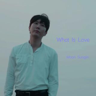 愛是什麽 / 文城鎮