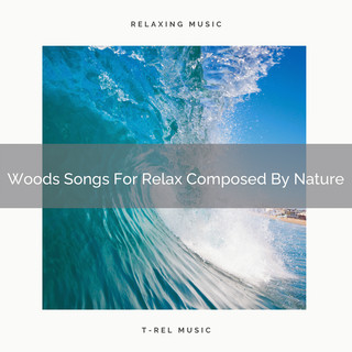 Woods Songs For Relax Composed By Nature