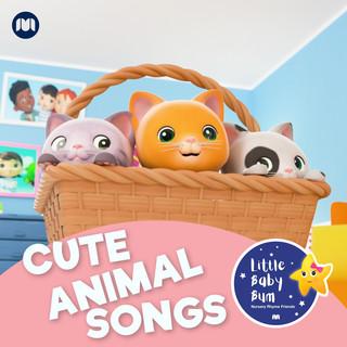 Cute Animal Songs !