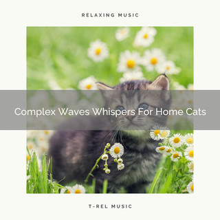 Complex Waves Whispers For Home Cats