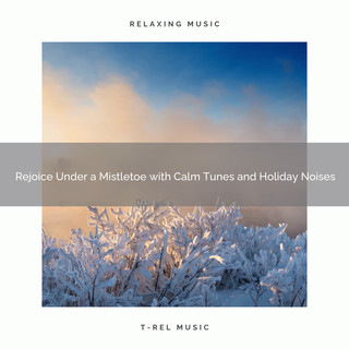 Rejoice Under A Mistletoe With Calm Tunes And Holiday Noises