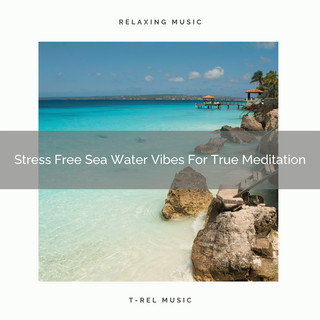 Stress Free Sea Water Vibes For True Meditation