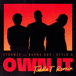 Own It (Feat. Burna Boy & Stylo G) (Toddla T Remix)