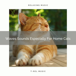 Waves Sounds Especially For Home Cats