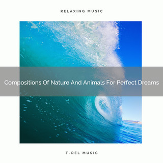 Compositions Of Nature And Animals For Perfect Dreams