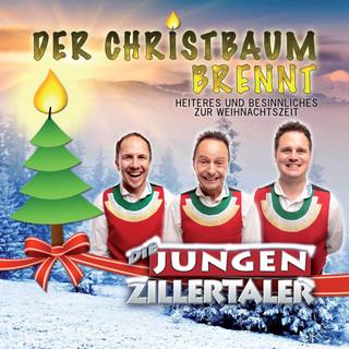 Der Christbaum Brennt (Heiteres Und Besinnliches Zur Weihnachtszeit)