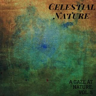 Celestial Nature - A Gaze At Nature, Vol. 5