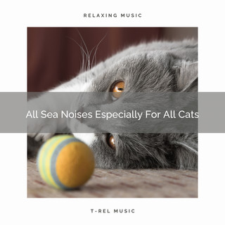 All Sea Noises Especially For All Cats