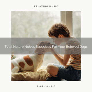 Total Nature Noises Especially For Your Beloved Dogs