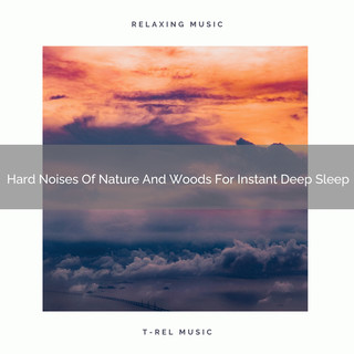 Hard Noises Of Nature And Woods For Instant Deep Sleep