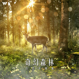 奇幻森林 – 自然系療癒 (Fantasy Forest - New Age Collection for Meditation)