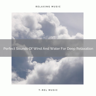 Perfect Sounds Of Wind And Water For Deep Relaxation