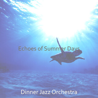 Echoes Of Summer Days