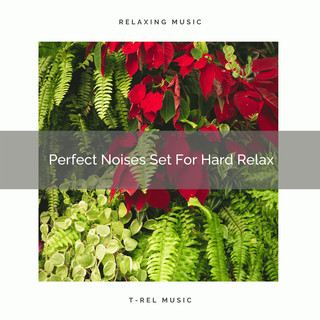 Perfect Noises Set For Hard Relax