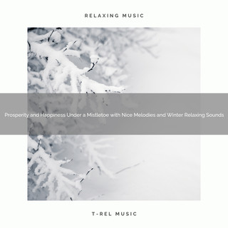 Prosperity And Happiness Under A Mistletoe With Nice Melodies And Winter Relaxing Sounds