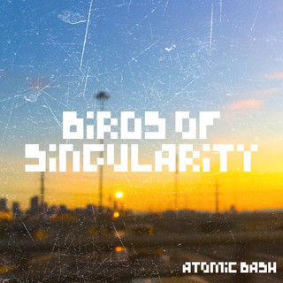Birds Of Singularity