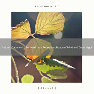 Autumn Calm Noise For Maximum Relaxation, Peace Of Mind And Good Night