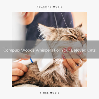Complex Woods Whispers For Your Beloved Cats
