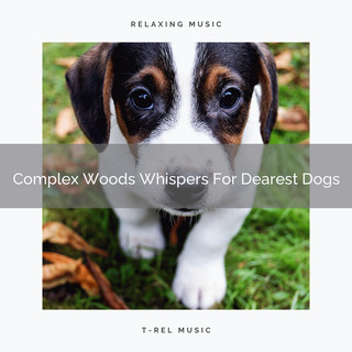 Complex Woods Whispers For Dearest Dogs