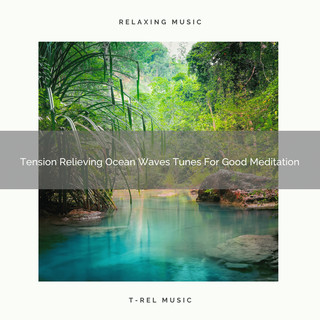 Tension Relieving Ocean Waves Tunes For Good Meditation