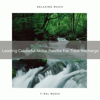 Leading Colourful Noise Palette For Total Recharge
