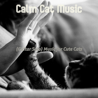 (Guitar Solo) Music For Cute Cats