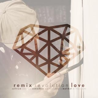 Revolution Love (Remix)
