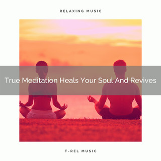 True Meditation Heals Your Soul And Revives