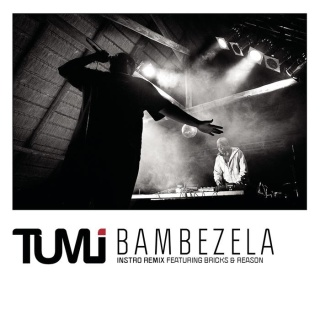 Bambezela (feat. Bricks & Reason) (Instro Remix)