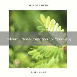 Colourful Noise Collection For Your Baby