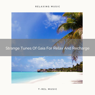 Strange Tunes Of Gaia For Relax And Recharge