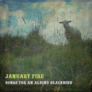 Songs For An Albino Blackbird